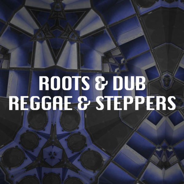 Roots Dub Reggae Steppers